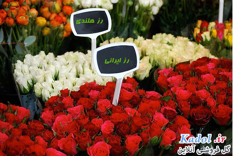 فروش عمده گل رز ، از بازار گل