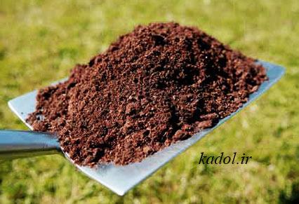 خاک مناسب بنت قوس